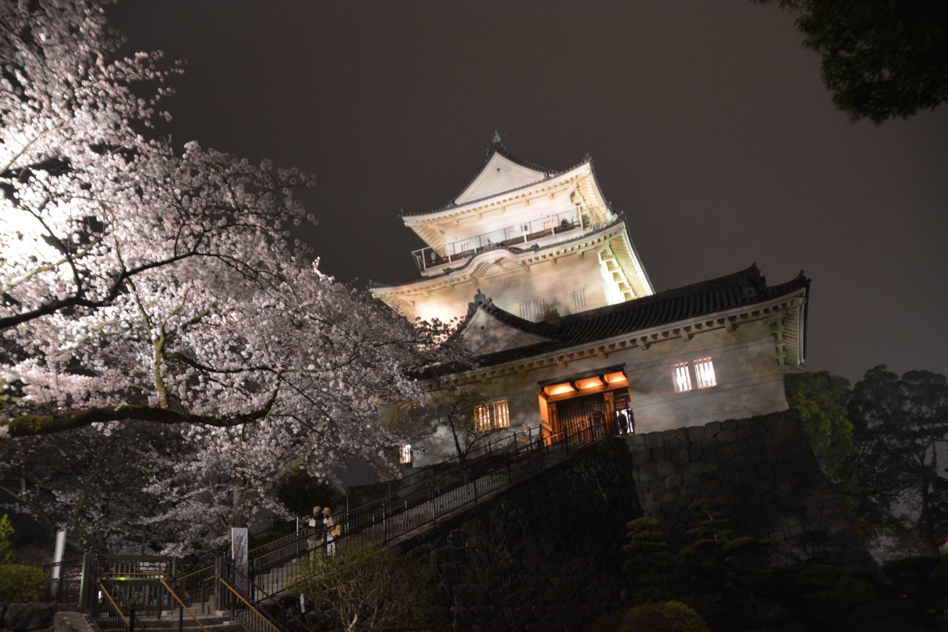 A photo of the Odaawara Castle during the Sakura Season
