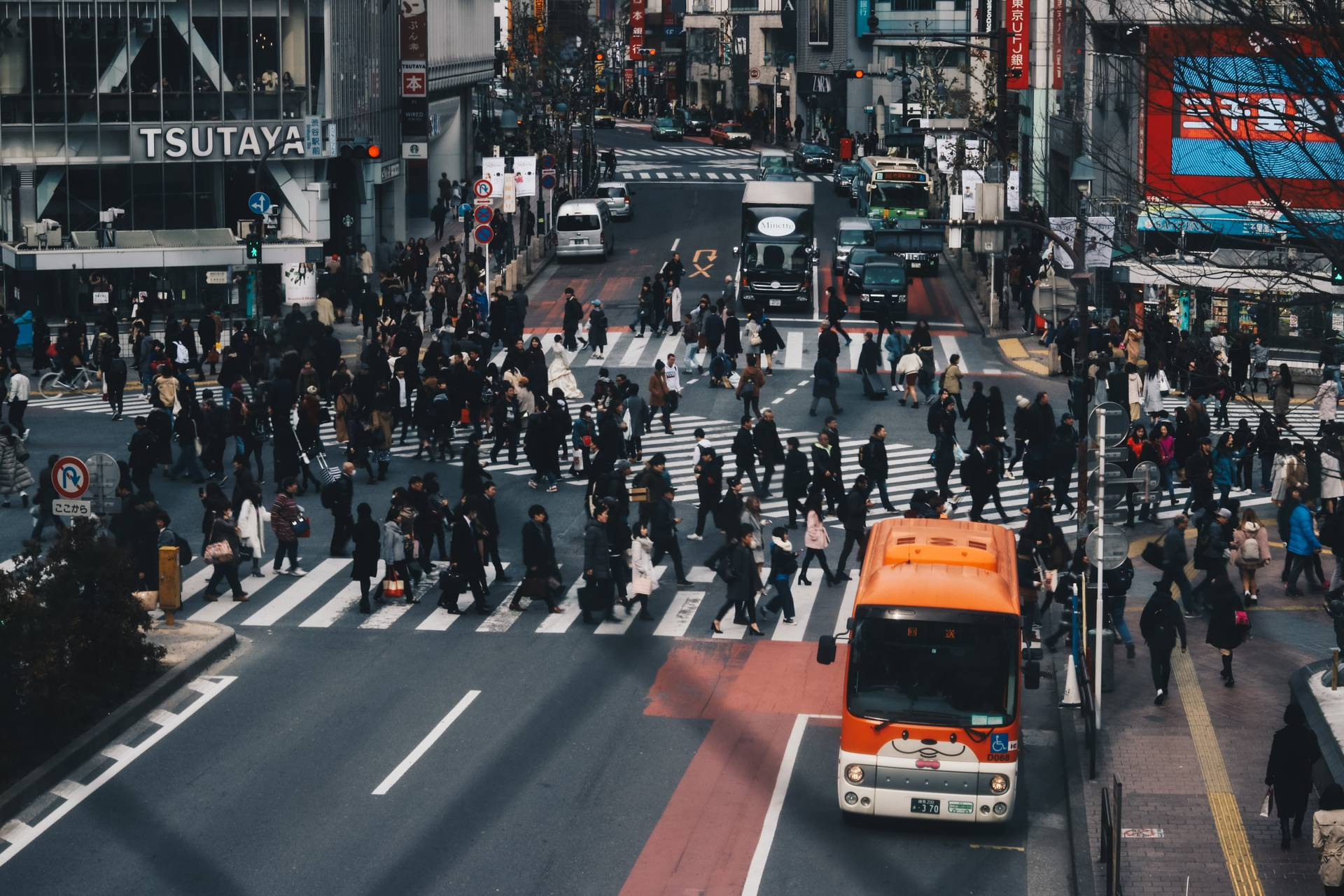 Photo of the Shibuya crossing