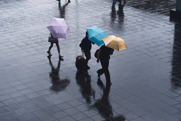 What should we do in case of typhoon in Japan?